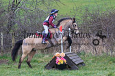 2016-03-13 South County Dublin Hunter Trials